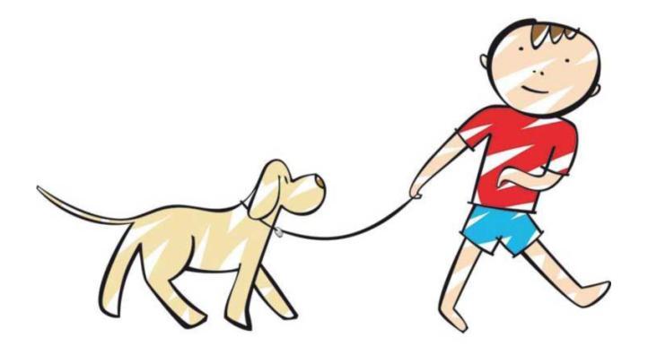 Cani in Spiaggia ad Alghero estate 2015
