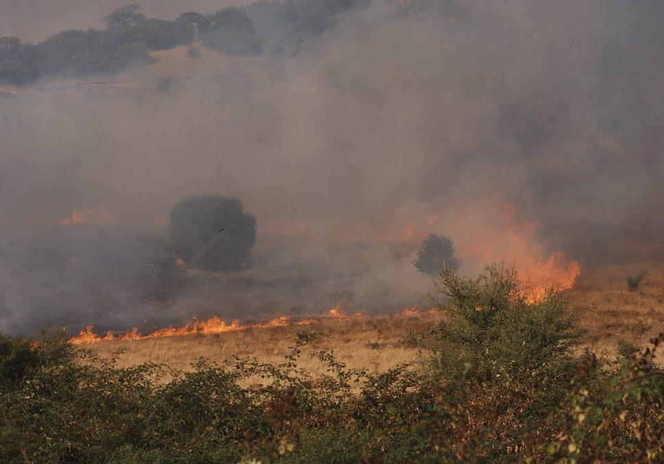 Incendio boschivo Sardegna. Martedì 28 luglio 2015 - Giornata regionale della memoria delle vittime degli incendi in Sardegna