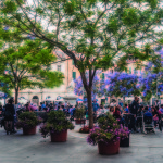 Sassari: Piazza Tola un successo che deve durare nel tempo.