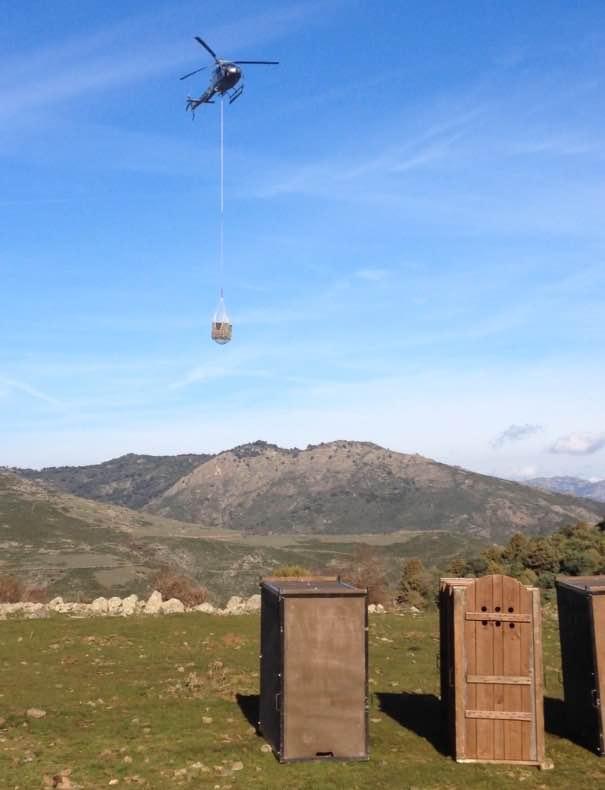 """Il 15 Dicembre 2015 cinque cervi sono stati trasportati dalla Sardegna verso la Corsica grazie al progetto Life+ Nature """"One deer two islands""""."""
