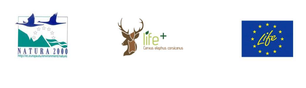 """Il progetto Life+ Nature """"One deer two islands"""" ha raggiunto un altro importante obiettivo."""