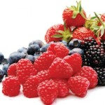"""Coldiretti Sardegna: """"La coltivazione dei frutti di bosco nel centro dell'isola protrebbe dare origine ad un mercato potenziale di 14milioni di euro""""."""