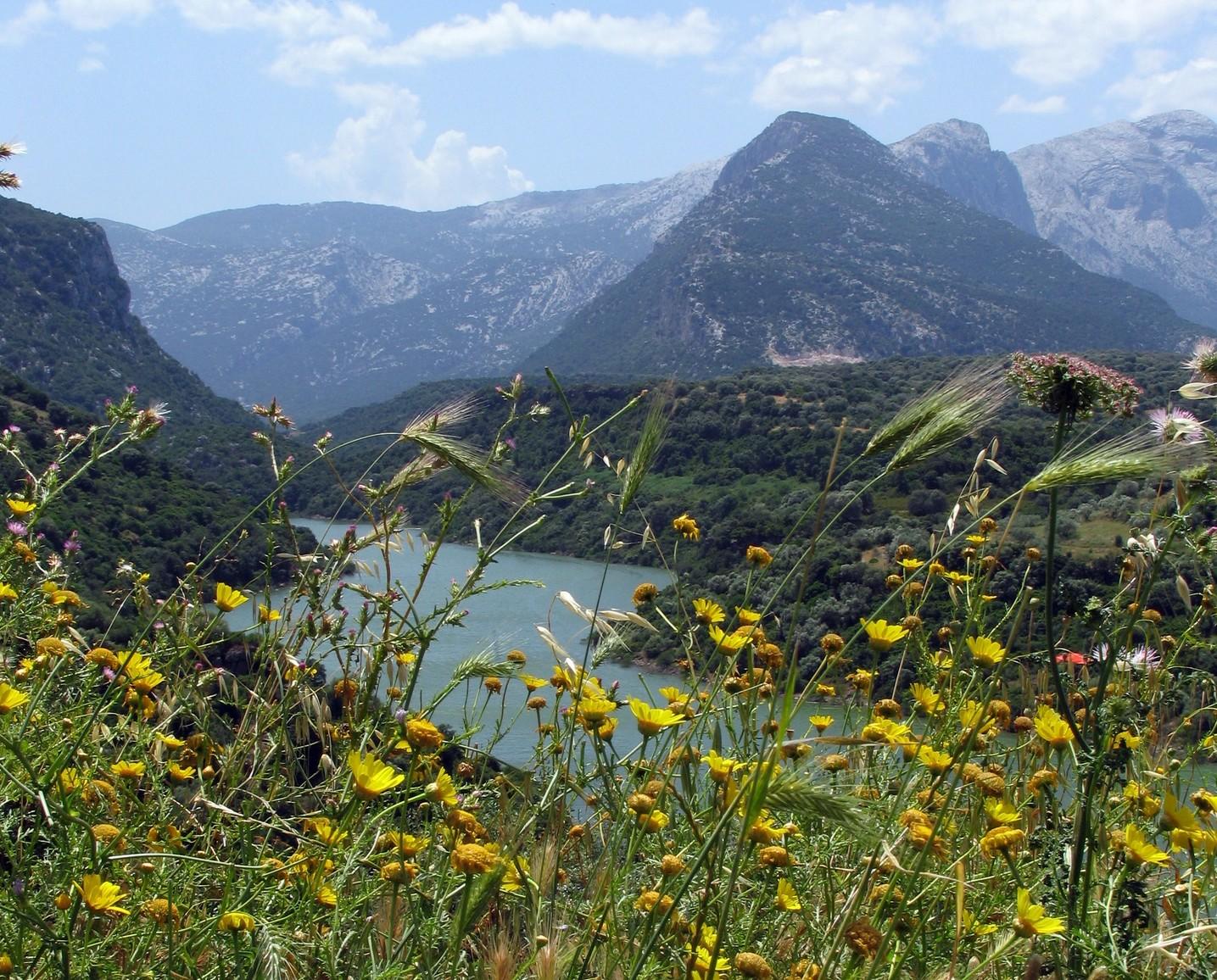 Valle del cedrino nelle vicinanze di Galtellì. Galtellì vi aspetta con una simpatica e originale competizione di 150 vini in concorso per a Terza Edizione di EnoGalte 2016 dal 13 al 16 aprile.