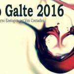 Galtellì vi aspetta con una simpatica e originale competizione di 150 vini in concorso per la Terza Edizione di EnoGalte 2016 dal 13 al 16 aprile.