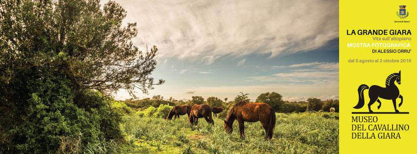 Mostra Fotografica La Grande Giara - Vita sull'Altopiano di Alessio Orrù dal 5 agosto al 2 ottobre 2016 presso il Museo del Cavallino della Giara a Genoni.