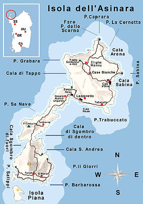 Cala D'Oliva Diving Center cartina dell'Asinara e delle varie spiagge e calette nell'isola.