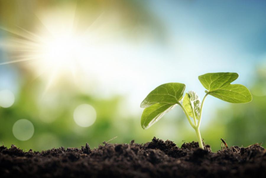 Un piano per lo sviluppo dell'agricoltura Bio con un protocollo d'intesa per la realizzazione di un BioDistretto dei parchi per lo sviluppo per lo sviluppo economico. Comune di Alghero, Parco Naturale Regionale di Porto Conte, COPAGRI Sardegna, ASAB Sardegna (Associazione Sarda per l'Agricoltura Biologica) Legambiente, BIOCERTIFICA – ICEA Sardegna, danno vita all'unione determinante per sostenere un settore sempre più strategico dell'agricoltura, con un notevole trend di crescita, capace di generare economia e sviluppo nel territorio, a partire dalle aree parco dove spesso si registra una frattura tra attività di conservazione e tutela, da una parte, e attività produttive ed economiche dall'altra.