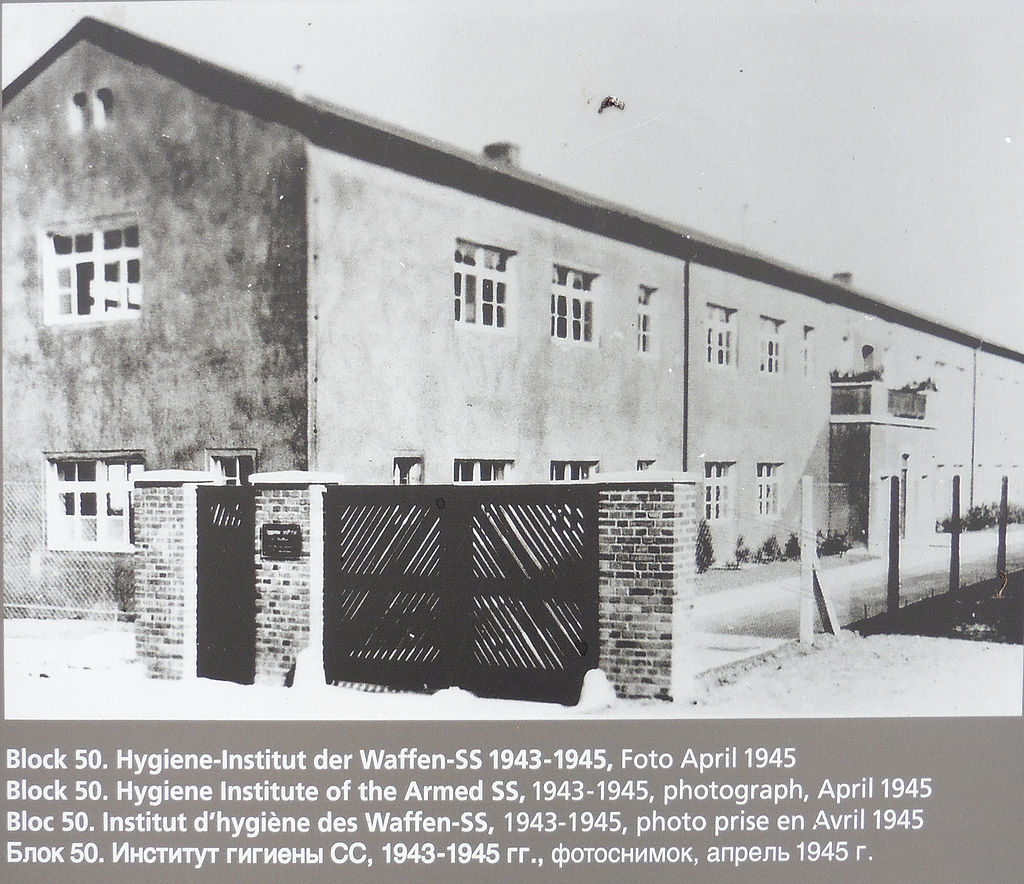 Il famigerato blocco 50 (che con il 46) fu sede di esperimenti di ogni genere su cavie umane sotto la supervisione di Waldemar Hoven e Ding-Schuler.