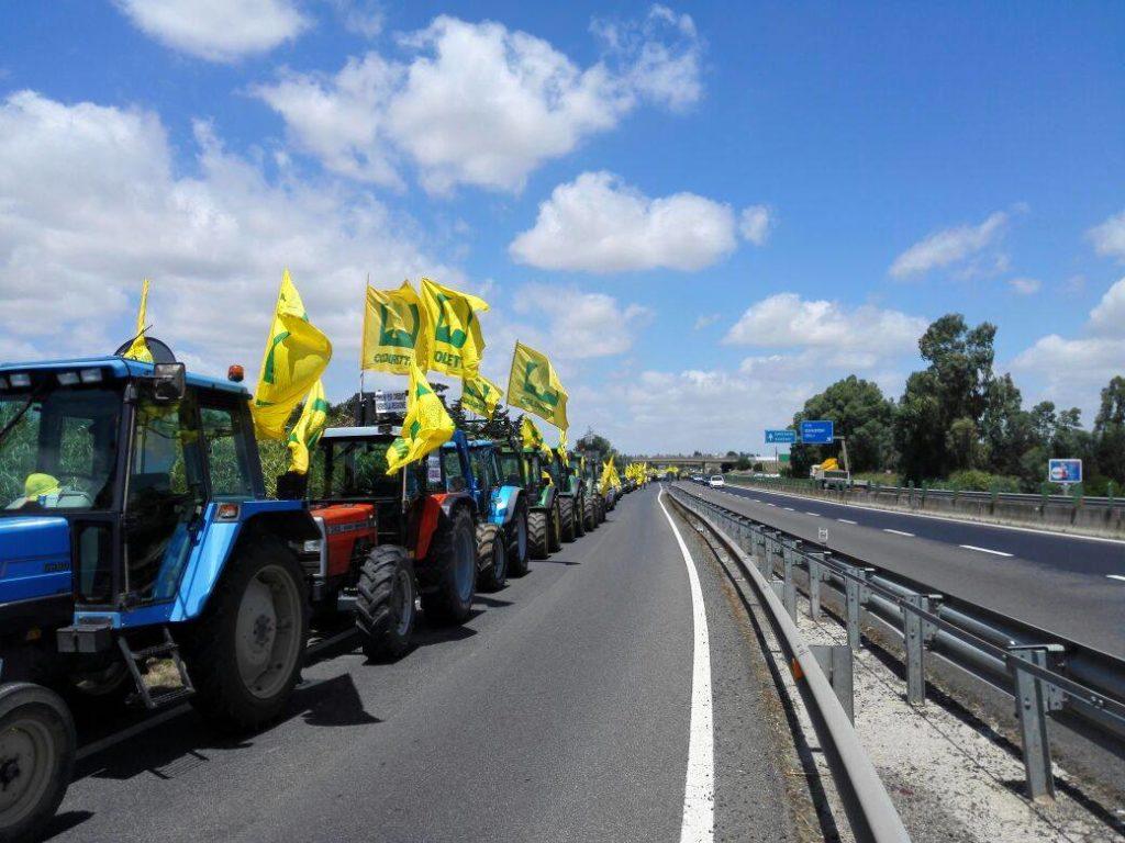 """Coldiretti Sardegna: """"Il 5 settembre 2017 mondo agricolo in piazza: basta con le promesse servono fatti concreti"""""""
