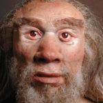 L'uomo di Neanderthal al Museo della Tonnara di Stintino