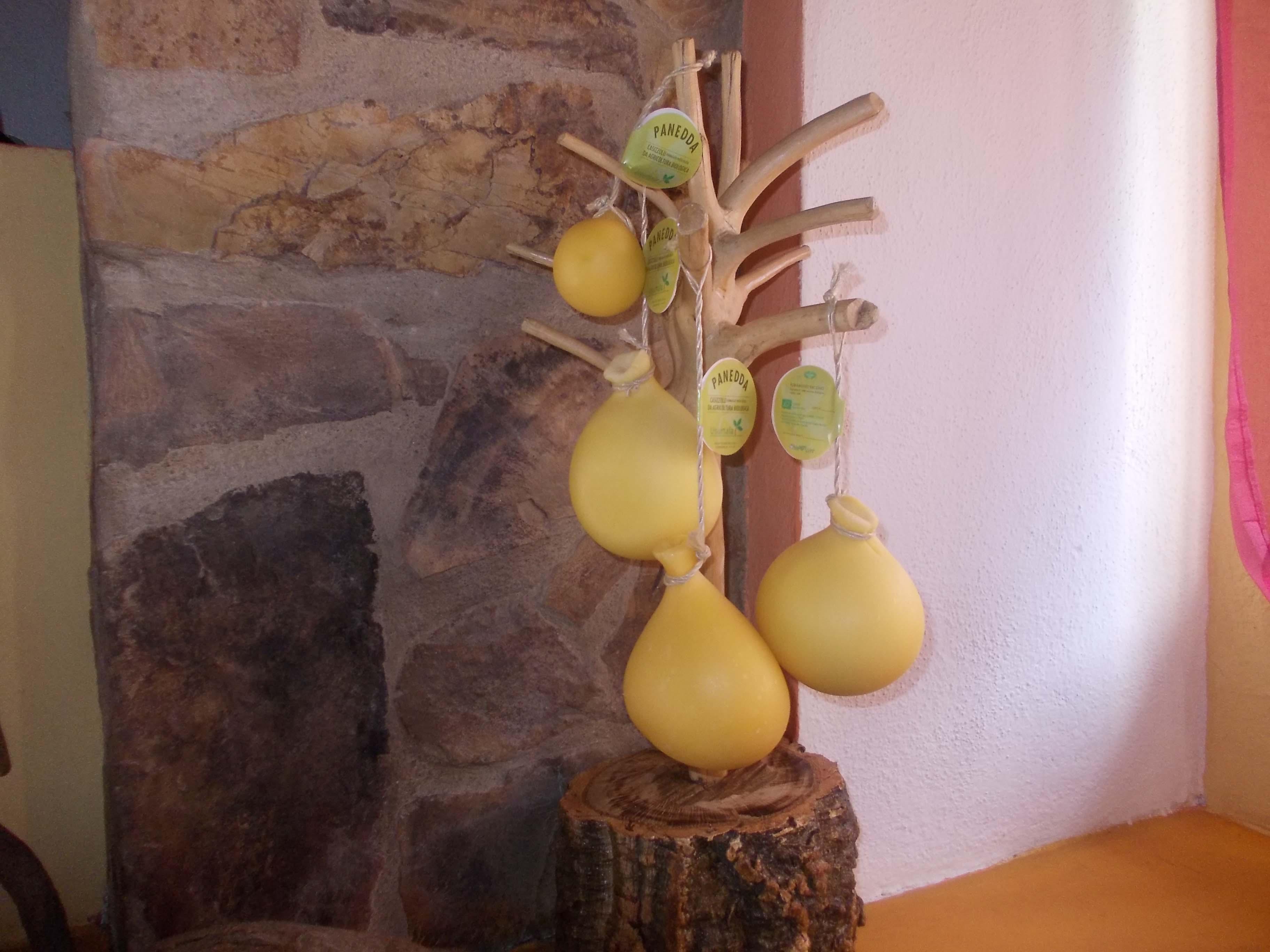 Orani struttura ricettiva Agriturismo Usurtala con possibilità di pernottamento e produzione formaggi tipici locali e vendita.