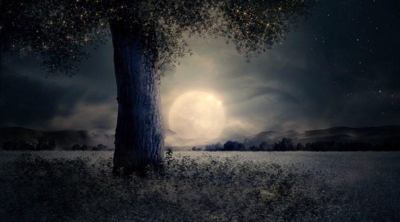 La Luna e la Valle racconto dello scrittore e linguista sardo Massimiliano Rosa.
